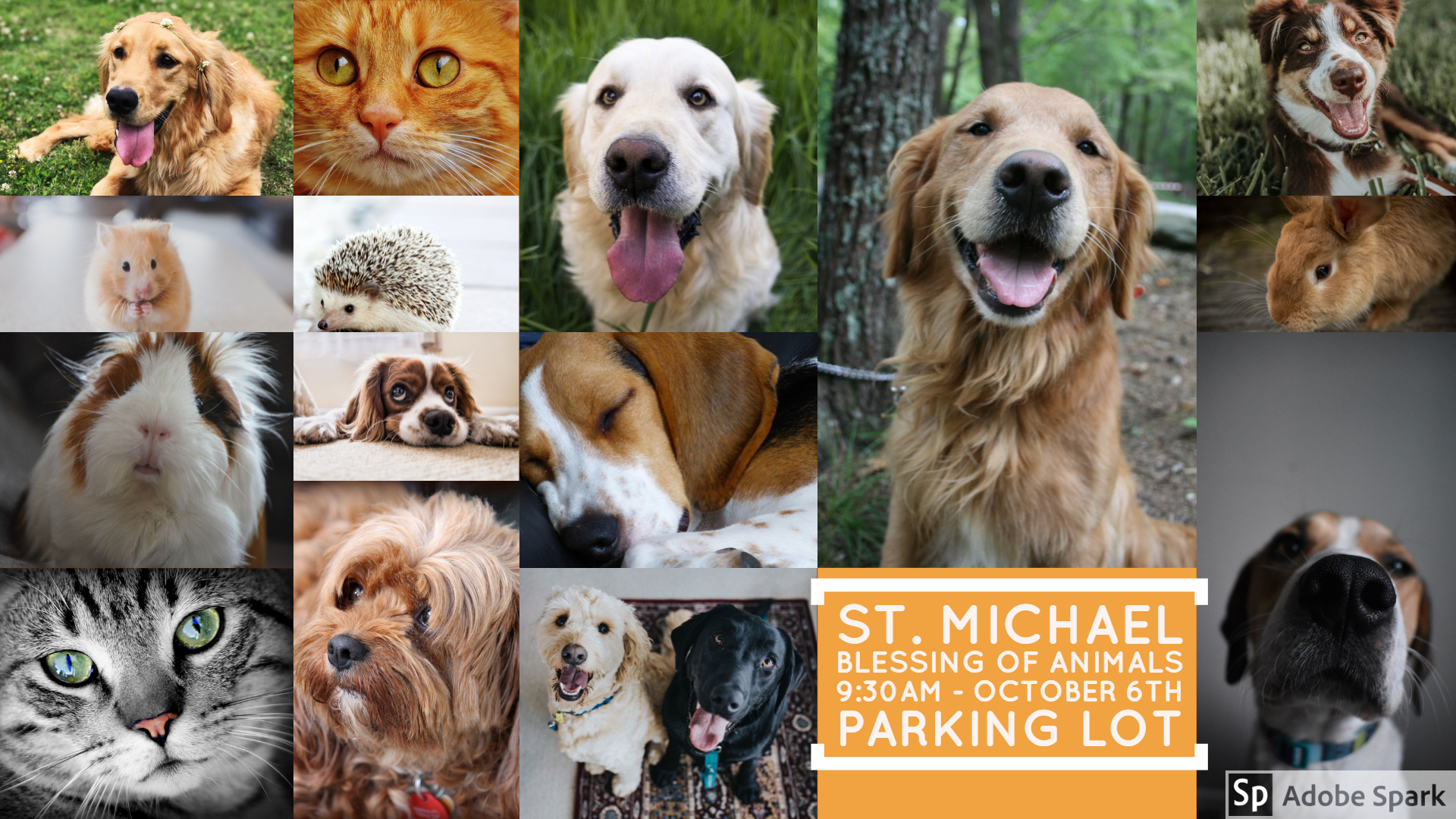 Blessing of Animals – October 6 at 9:30am